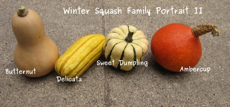 Winter Squash family photo