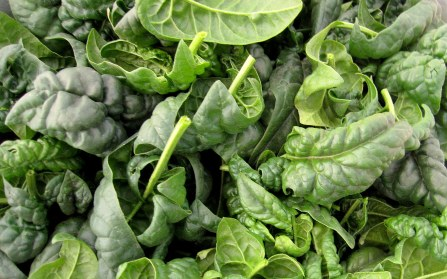 A photo of the healthy spinach