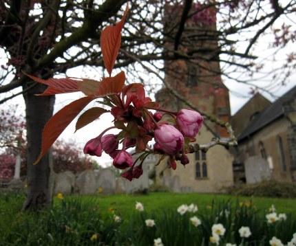 A photo of a churchyard