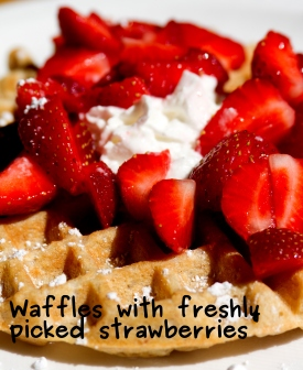 A photo of the waffeles