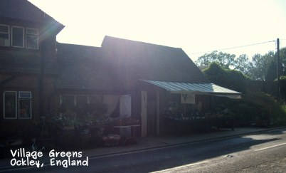 A photo of the shop