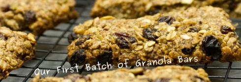 Photo of our first batch of granola bars