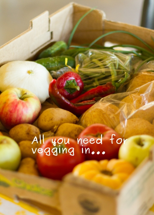 Photo of box of veggies for veg in