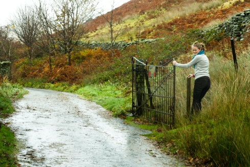 Photo of Gate in the Lake District