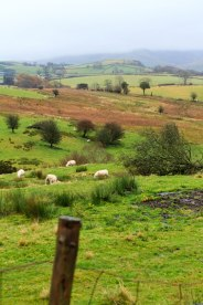 Photo of Yorkshire Dales