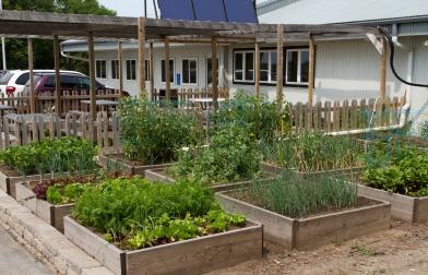Solar Gardens-1