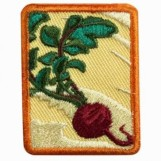 Photo of Locavore Badge